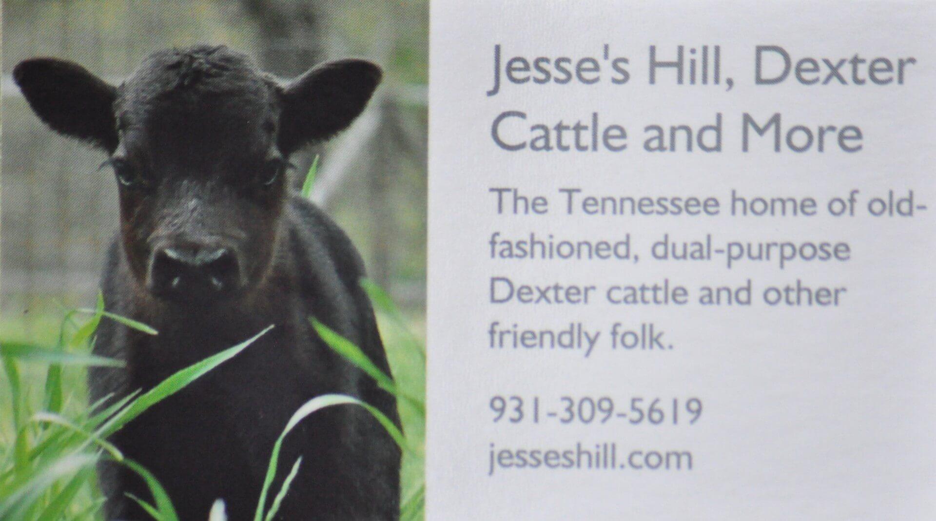 Jesse's Hill Dexters